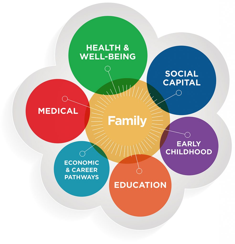 Crann Care Model