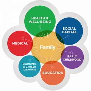 Crann Model of Care