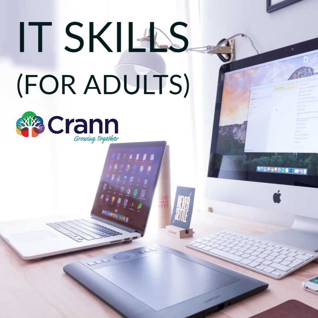 IT Skills (Adults)