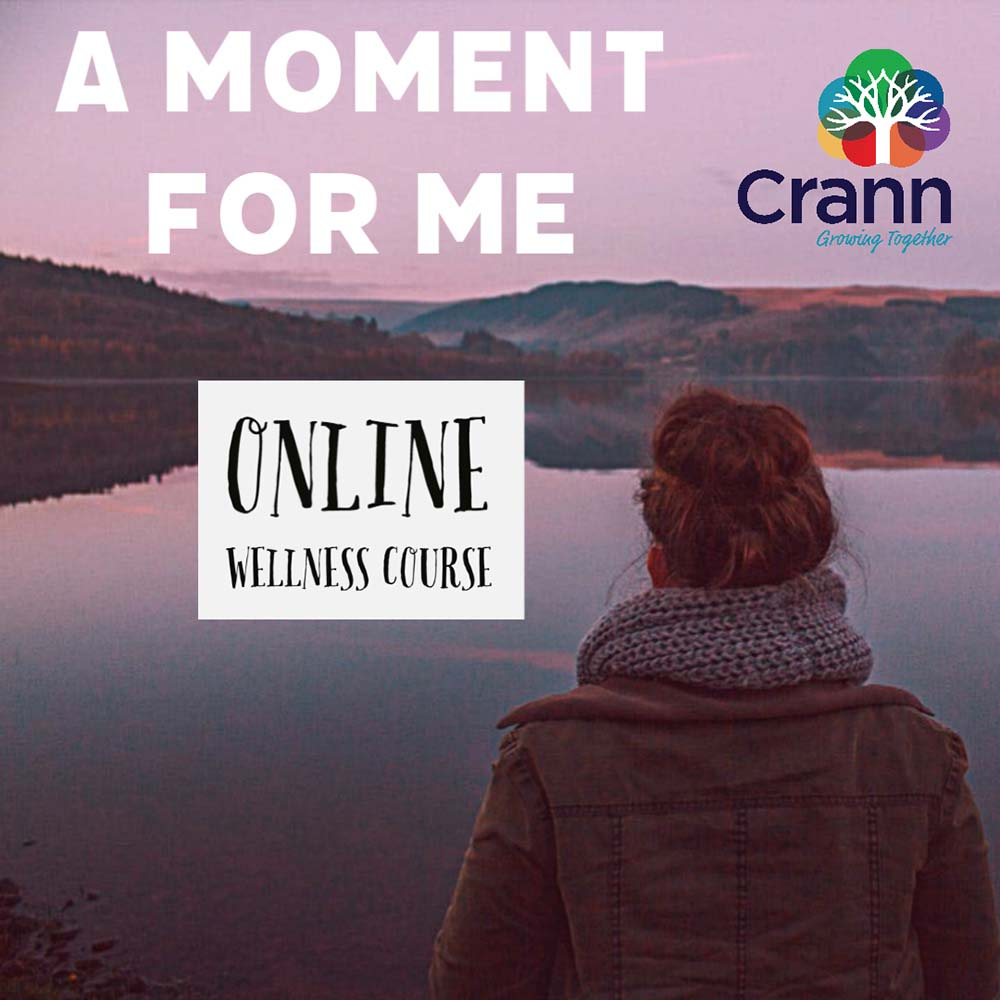 A Moment For Me (Online Wellness Course)