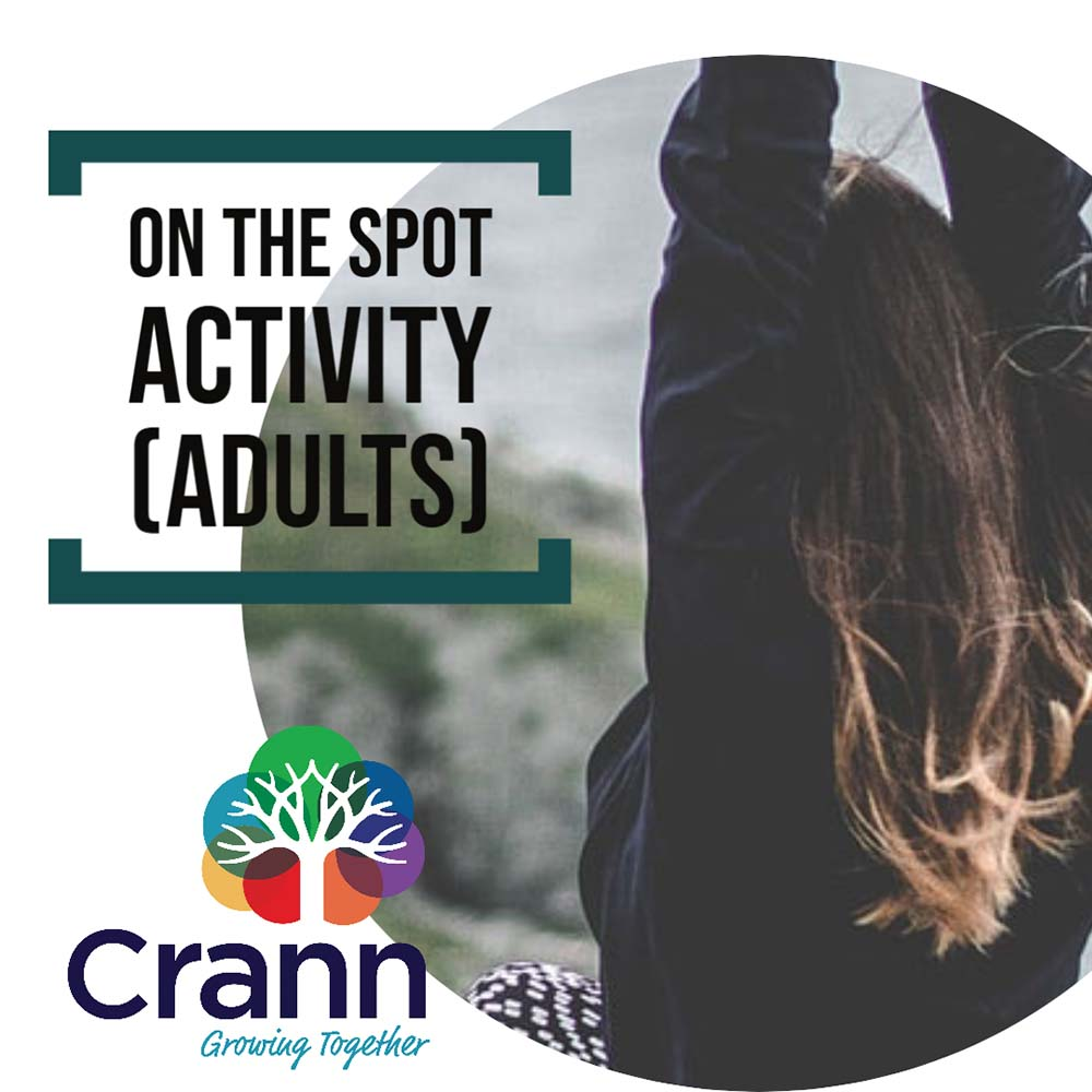 On the Spot Activity (Adults)