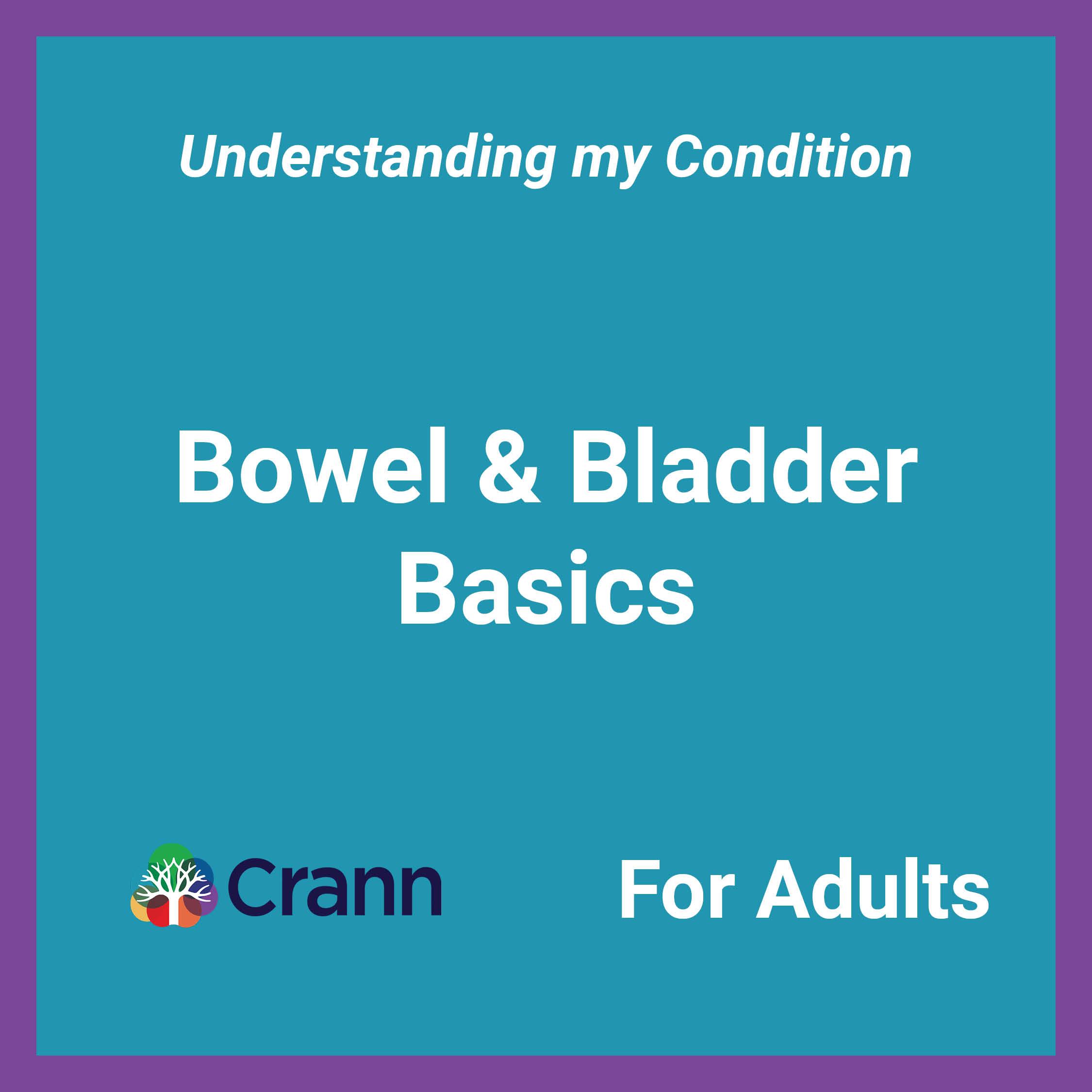 Bowel and Bladder Basics banner image - text overlayed on blue background