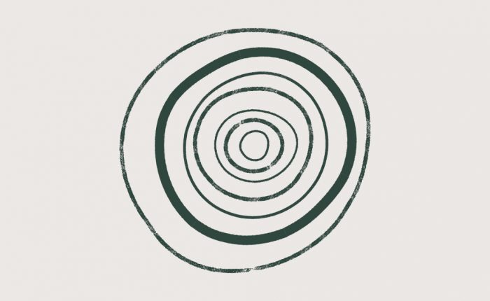 Stone Grey Background with Dark Green Tree Rings to Symbolise Growth