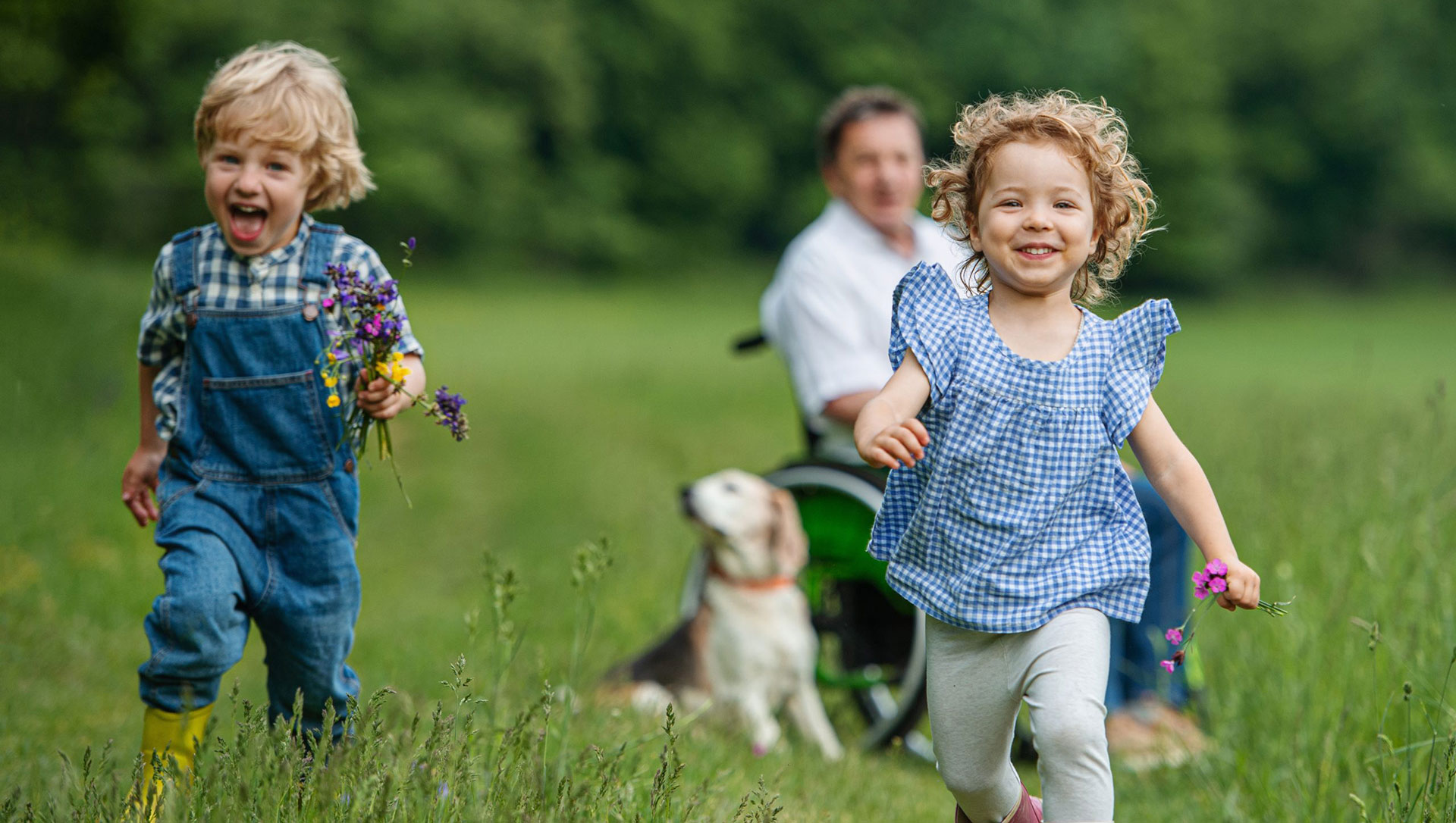 A boy and a girl, both around 5 years old, running in the field holding flowers. Their father is in the background in his wheelchair with their dog.
